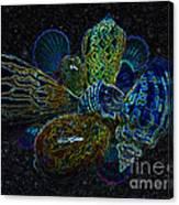 Positive Energy Seashells - Lucky Black Series Canvas Print