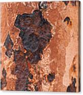 Post In Decay  Canvas Print