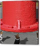 Postcards From Otis - The Hydrant Canvas Print