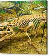Postosuchus Fossil Canvas Print