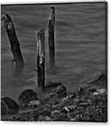 Posts In The Water Canvas Print