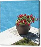Pot In Pool Canvas Print