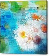 Pot Of Daisies 02 - J3327100-bl1t22a Canvas Print