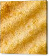 Potato Chip Macro 2 Canvas Print