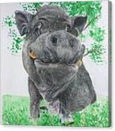 Potbellied Pig Pet Portraits Watercolor Memorial Made To Order 5x7 Inch Canvas Print