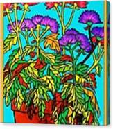Potted Mums Framed Canvas Print