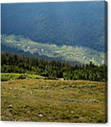 Poudre Valley Canvas Print