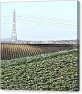 Powerlines And Plowed Fields Canvas Print