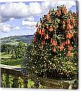 Powis Castle Terrace Canvas Print