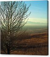 Prairie Autumn 5 Canvas Print