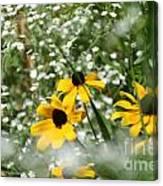Prairie Colors Canvas Print