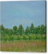 Prairie Morning Light Canvas Print