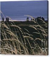 Prairie Morning Canvas Print