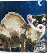 Prairie Night Canvas Print