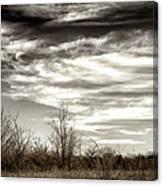 Prairie Winter Sky Canvas Print