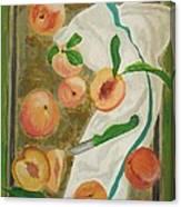 Pre-cobbler Canvas Print