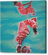 Precious Horses Canvas Print