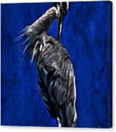Preening Time Canvas Print