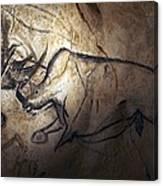 Prehistoric Cave Paintings, Chauvet Canvas Print
