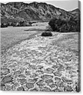 Prehistoric - Clark Dry Lake Located In Anza Borrego Desert State Park In California. Canvas Print