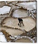 Preincan Salt Mines In Maras Peru Canvas Print
