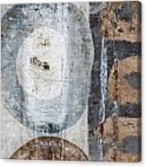 Silken Circles 2 Canvas Print