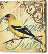 Pretty Bird 3 Canvas Print