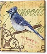 Pretty Bird 4 Canvas Print
