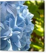 Pretty Blue Flower Canvas Print
