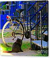 Pretty Cat In Verdun Taking The Sun Blue Picket Fence And Bike Montreal Garden Scene Carole Spandau  Canvas Print