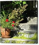 Pretty Gardens Canvas Print