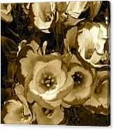 Pretty Petals 2 Canvas Print