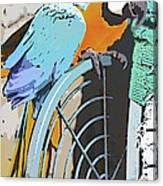 Pretty Polly Canvas Print