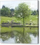 Pretty Tree In Park Picture.  Canvas Print