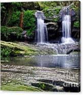 Pretty Waterfalls In Rainforest Canvas Print