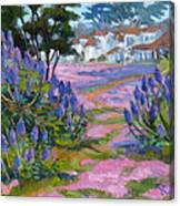 Pride Of Madeira Canvas Print