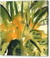 Primroses Canvas Print