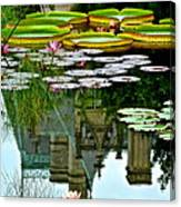 Prince Charmings Lily Pond Canvas Print