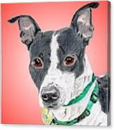 Princess - A Former Shelter Sweetie Canvas Print