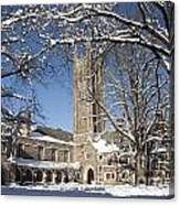 Princeton Wonderland Canvas Print