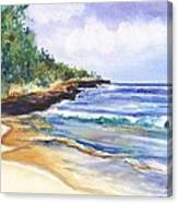 Pristine Mahaulepu Beach Canvas Print