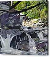 Private Spot Canvas Print