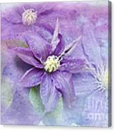 Profusion Of Purple Canvas Print