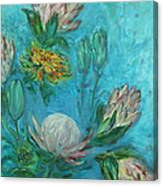 Protea Flower Study I Canvas Print