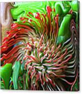 Protea Bouquet Canvas Print