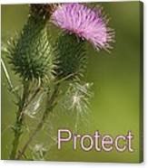 Protect Nature Canvas Print