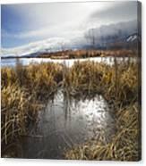 Protected Wetlands Canvas Print