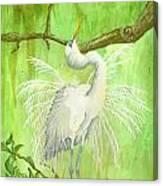Proud Egret Canvas Print