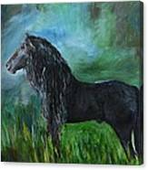 Proud Friesian Canvas Print