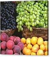Provencal Fruit Canvas Print